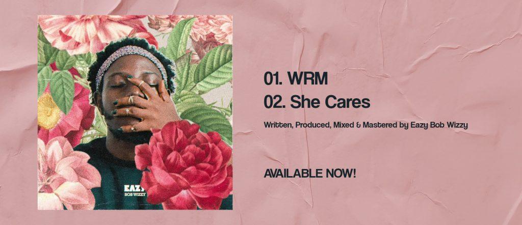 WRM/She Cares artwork